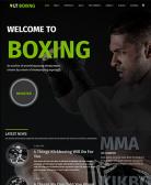 lt-boxing