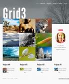jb-grid3